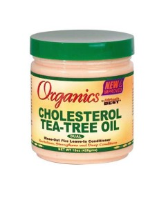 Organics Cholesterol Teatree Leave In Conditioner