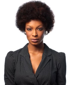 Sleek Wig Fashion HH Afro Wig